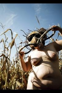 champ de maïs,rite païen